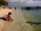 Mamie et son requin dormeur