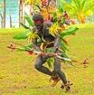 Vanuatu danse Photo internet
