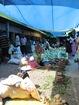 le marché fruits et légumes