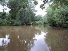 la rivière de faaroa