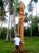 TamTam des Vanuatu